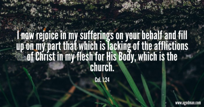 Col. 1:24 I now rejoice in my sufferings on your behalf and fill up on my part that which is lacking of the afflictions of Christ in my flesh for His Body, which is the church.
