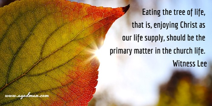 Eating the tree of life, that is, enjoying Christ as our life supply, should be the primary matter in the church life. Witness Lee