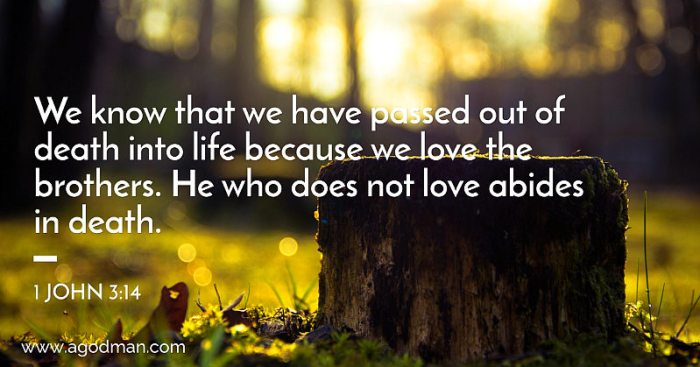 1 John 3:14 We know that we have passed out of death into life because we love the brothers. He who does not love abides in death.