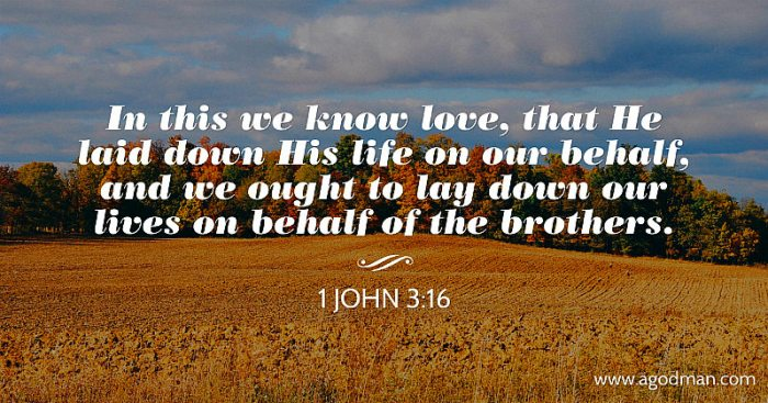 1 John 3:16 In this we know love, that He laid down His life on our behalf, and we ought to lay down our lives on behalf of the brothers.