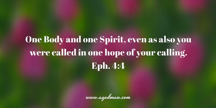Eph. 4:4 One Body and one Spirit, even as also you were called in one hope of your calling.