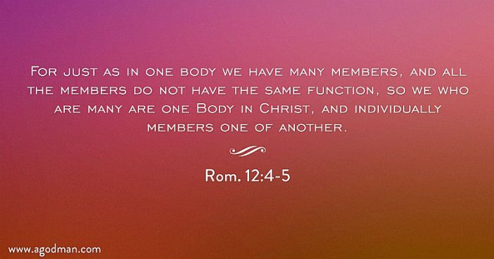 Rom. 12:4-5 For just as in one body we have many members, and all the members do not have the same function, so we who are many are one Body in Christ, and individually members one of another.