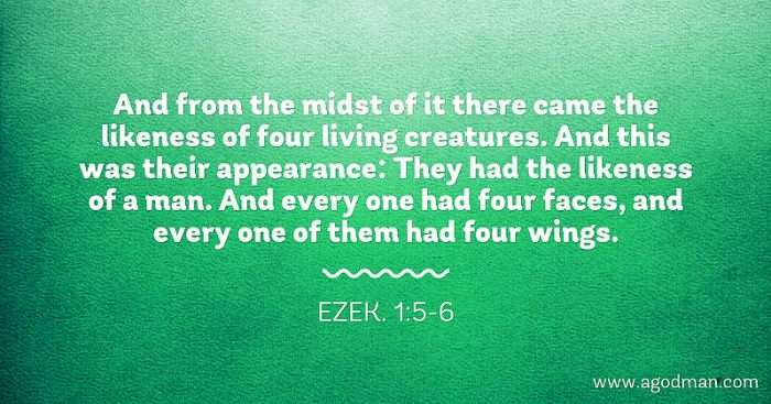 Ezek. 1:5-6 And from the midst of it there came the likeness of four living creatures. And this was their appearance: They had the likeness of a man. And every one had four faces, and every one of them had four wings.