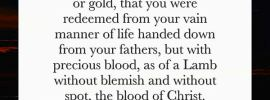 1 Pet. 1:18-19 Knowing that it was not with corruptible things, with silver or gold, that you were redeemed from your vain manner of life handed down from your fathers, but with precious blood, as of a Lamb without blemish and without spot, the blood of Christ.