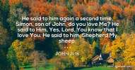 John 21:16 He said to him again a second time, Simon, son of John, do you love Me? He said to Him, Yes, Lord, You know that I love You. He said to him, Shepherd My sheep.