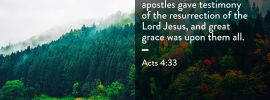Acts 4:33 And with great power the apostles gave testimony of the resurrection of the Lord Jesus, and great grace was upon them all.