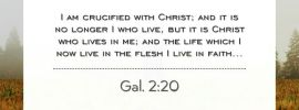 Gal. 2:20 I am crucified with Christ; and it is no longer I who live, but it is Christ who lives in me; and the life which I now live in the flesh I live in faith...