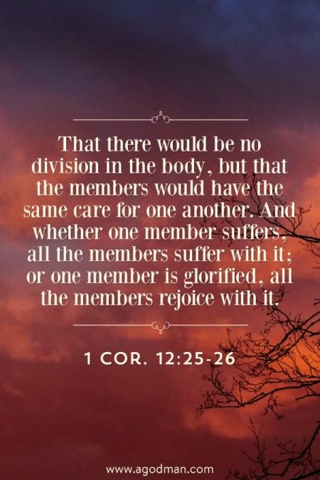 1 Cor. 12:25-26 That there would be no division in the body, but that the members would have the same care for one another. And whether one member suffers, all the members suffer with it; or one member is glorified, all the members rejoice with it.