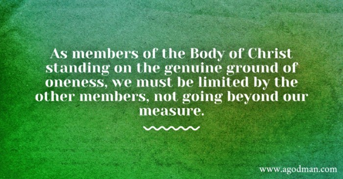 As members of the Body of Christ standing on the genuine ground of oneness, we must be limited by the other members, not going beyond our measure.