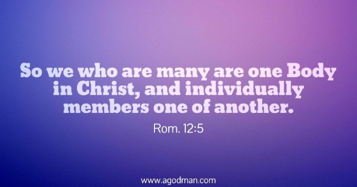 Rom. 12:5 So we who are many are one Body in Christ, and individually members one of another.