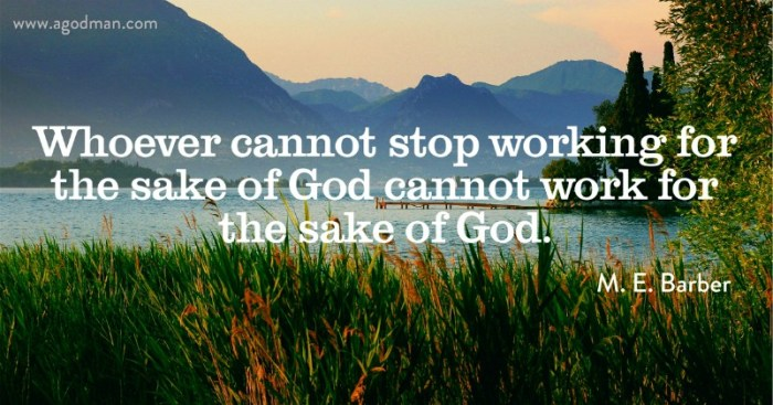 Whoever cannot stop working for the sake of God cannot work for the sake of God. M. E. Barber