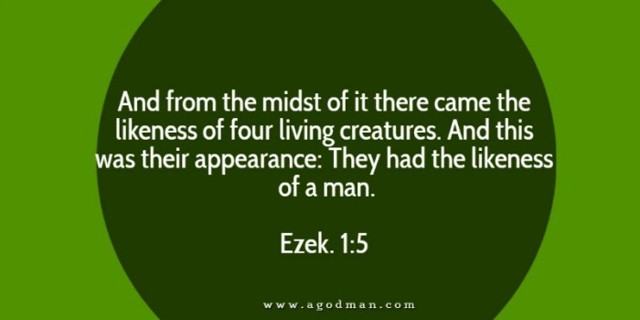 Ezek. 1:5 And from the midst of it there came the likeness of four living creatures. And this was their appearance: They had the likeness of a man.