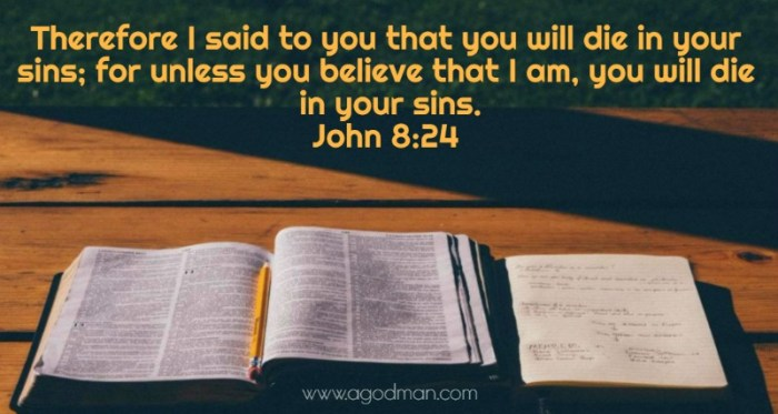 John 8:24 Therefore I said to you that you will die in your sins; for unless you believe that I am, you will die in your sins.
