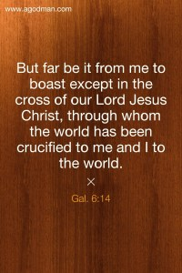 We Experience the Cross as the Center of God's Building to be Built into the Church