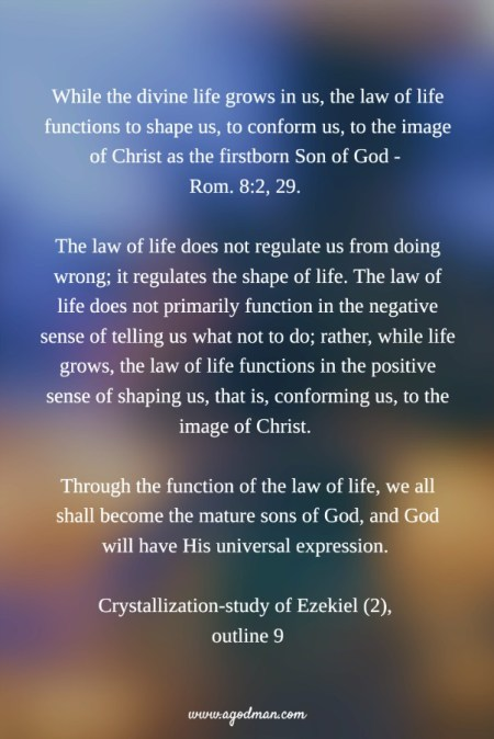 While the divine life grows in us, the law of life functions to shape us, to conform us, to the image of Christ as the firstborn Son of God - Rom. 8:2, 29. The law of life does not regulate us from doing wrong; it regulates the shape of life. The law of life does not primarily function in the negative sense of telling us what not to do; rather, while life grows, the law of life functions in the positive sense of shaping us, that is, conforming us, to the image of Christ. Through the function of the law of life, we all shall become the mature sons of God, and God will have His universal expression. Crystallization-study of Ezekiel (2), outline 9