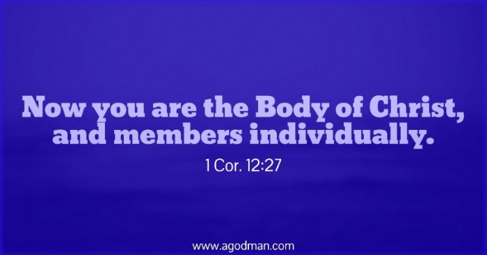 1 Cor. 12:27 Now you are the Body of Christ, and members individually.