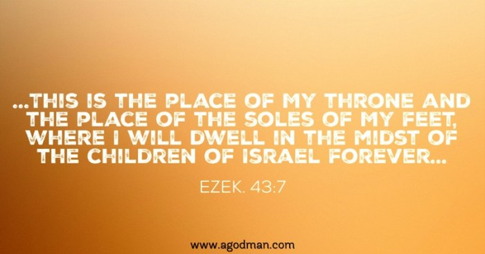 Ezek. 43:7 ...This is the place of My throne and the place of the soles of My feet, where I will dwell in the midst of the children of Israel forever...