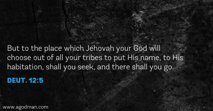 Deut. 12:5 But to the place which Jehovah your God will choose out of all your tribes to put His name, to His habitation, shall you seek, and there shall you go.