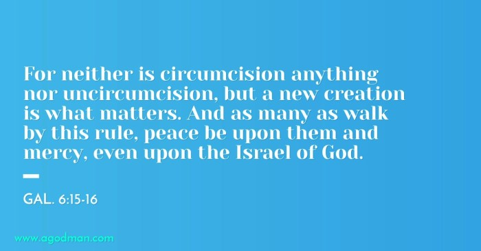 Gal. 6:15-16 For neither is circumcision anything nor uncircumcision, but a new creation is what matters. And as many as walk by this rule, peace be upon them and mercy, even upon the Israel of God.