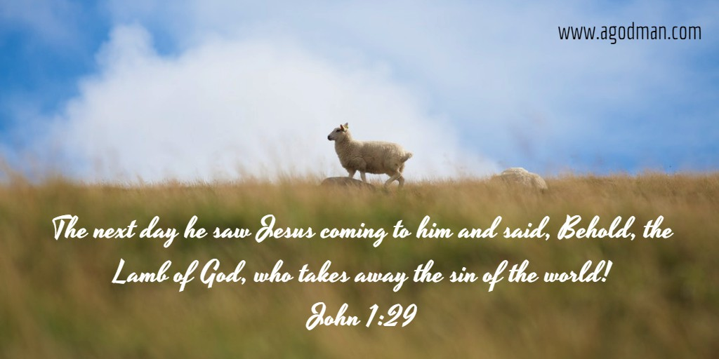 Christ as the Lamb of God Took away our Sin and Opened the ...