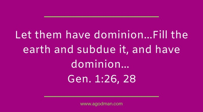 Image result for god gives man dominion over the earth