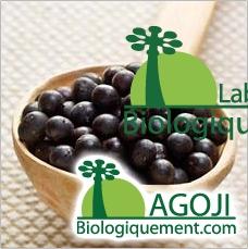 Baie açaï fruit bio antioxydant naturel puissant