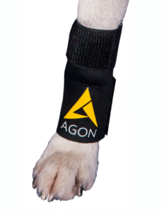 AGON FRONT DOG LEG KNEE BRACE- INJURY SUPPORT USA WRAP CANINE K9 PET PETCO PETSMART
