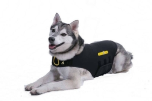 cozyfur dog anxiety vest