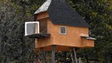 Photo of بالصور: في اليابان عمليا لا تستغرب..بيت على الشجر صممه صاحبه لشرب الشاي فقط