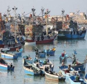ارتفاع الكميات المفرغة من منتجات الصيد الساحلي والتقليدي بـ11% متم أكتوبر