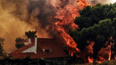 Photo of مصرع 50 شخصا على الأقل بسبب اندلاع حرائق غابات في اليونان