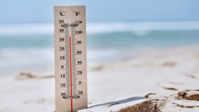Photo of درجات الحرارة الدنيا والعليا المرتقبة غدا الأحد