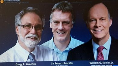 Photo of أمريكيان وبريطاني ينالون جائزة نوبل للطب لسنة 2019