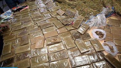 Photo of أكادير: إجهاض عملية لتهريب المخدرات على الصعيد الدولي وحجز ما مجموعه طنين و230 كيلوغراما من مخدر الشيرا