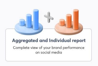 aggregated and individual report