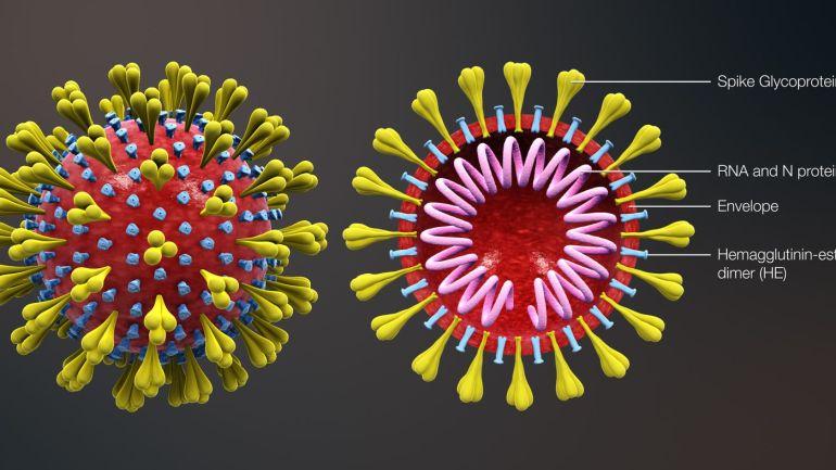 Coronavirus:richiesta disponibilità  RSA/Nuclei RSA ad accogliere pazienti positivi