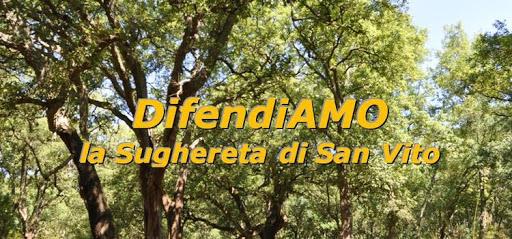 Regione. Approvato il piano per salvare il bosco e la sughereta di San Vito