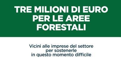 Regione Lazio: 3 milioni per sviluppo delle aree forestali