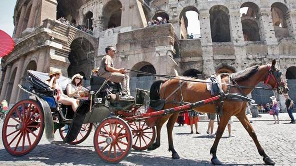"""Roma. """"Le Botticelle solo nei parchi della città"""""""