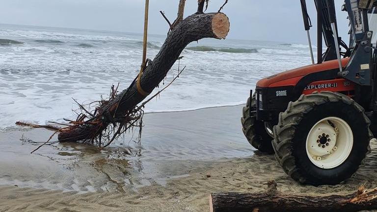 Fondi. La grande pulizia dopo le mareggiate: 8° giorno di lavoro sul litorale fondano