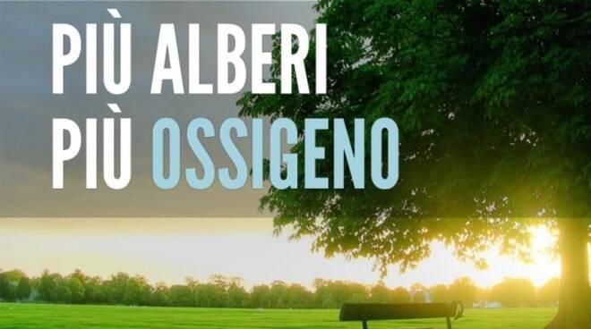 Ambiente, progetto Ossigeno: 6 mln per 100 nuovi progetti