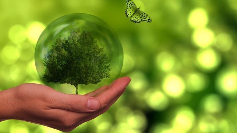 Transizione ecologica: Pubblicati i bandi GENS