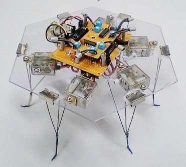"""Résultat de recherche d'images pour """"physarum robot"""""""