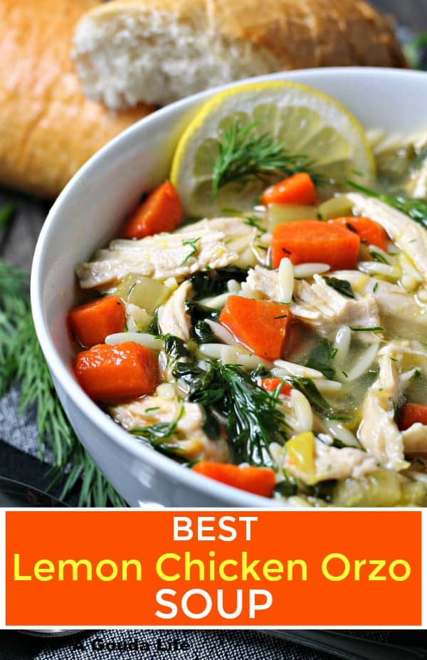 lemon chicken orzo soup ~ overhead view showing broth with shredded chicken, diced carrots, orzo, fresh dill and a slice of lemon