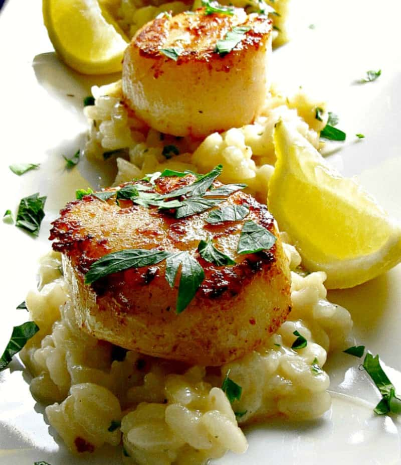 lemon garlic butter sea scallops on white platter on a bed of risotto