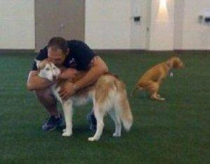 Mooie foto's! Is dat geen hond die aan het poepen is?