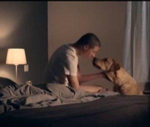 Commercial KNFG Geleidehonden viral op het internet