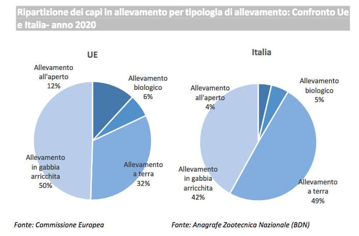 Uova: consumi in forte crescita nel 2020 (+14% in valore)