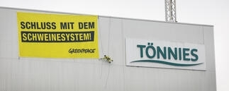 greenpeace aktion bei tonnies lost lsv