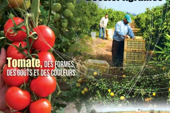 Agriculture du maghreb N° 76 Juin2014
